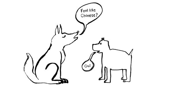 bilingual dogs