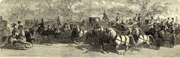 cp grand drive horse carriage nypl.510d47e1-0fc1-a3d9-e040-e00a18064a99.001.w
