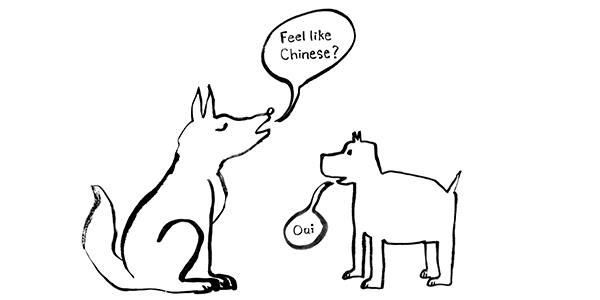 bilingual dogs